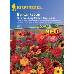 Tout feu tout flamme – Mélange de fleurs pour jardinières de balcon