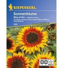 Tournesol Ring of Fire