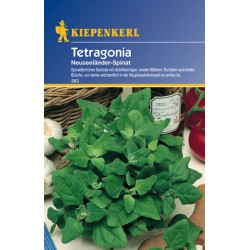 Epinard Tetragonia