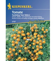 Tomate retombante Tumbling Tom Yellow