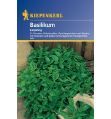 Basilic, annuel