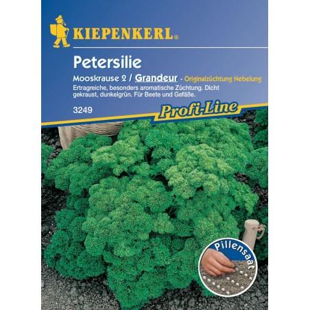 Persil Mooskrause 2 (Nain frisé mousse) / Grandeur, graines enrobées