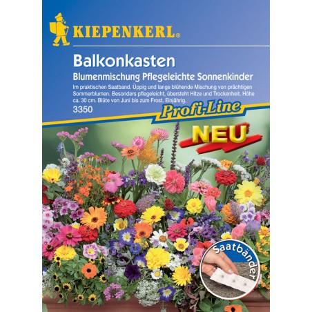 Les enfants de l'été – Mélange de fleurs faciles à cultiver pour jardinières de balcon, ruban présemé