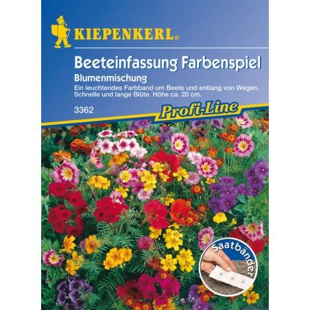 Mélange de fleurs multicolores pour bordures de plate-bande, ruban présemé