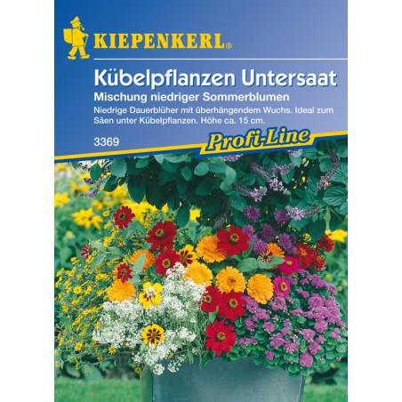 Tapis de fleurs mélangées pour plantes en bacs