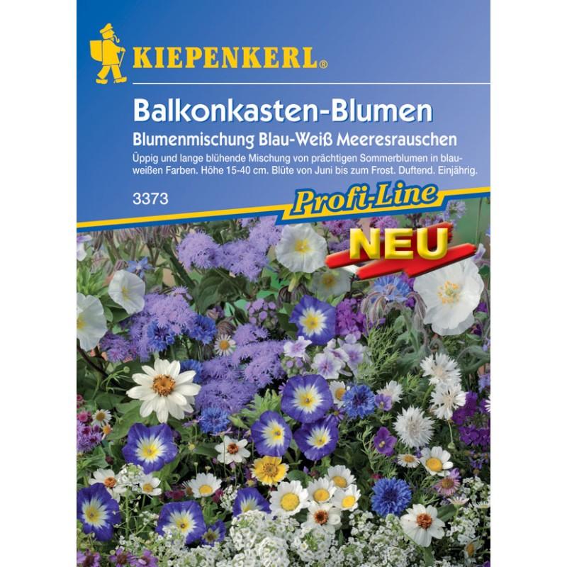 Rumeur marine – Mélange de fleurs pour jardinières de balcon