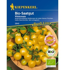 Tomate Groseille Golden Currant Bio