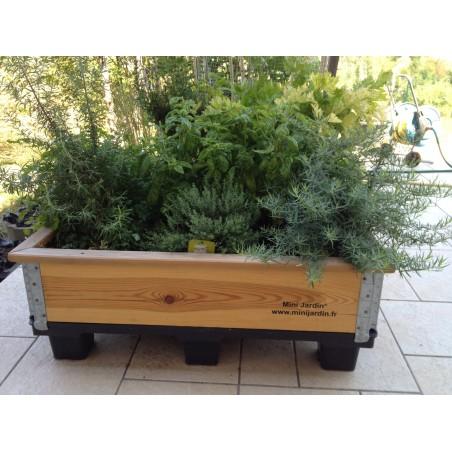 Mini Jardin ®  L  : 120 x 100 x 35