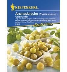 Cerises d'Ananas