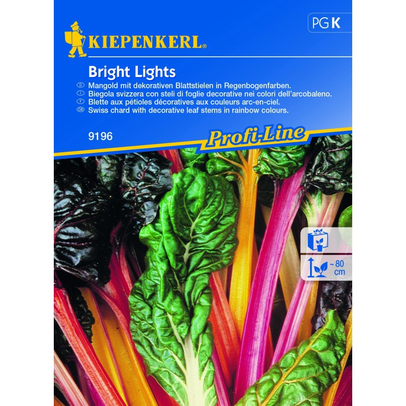 Bette Bright Lights