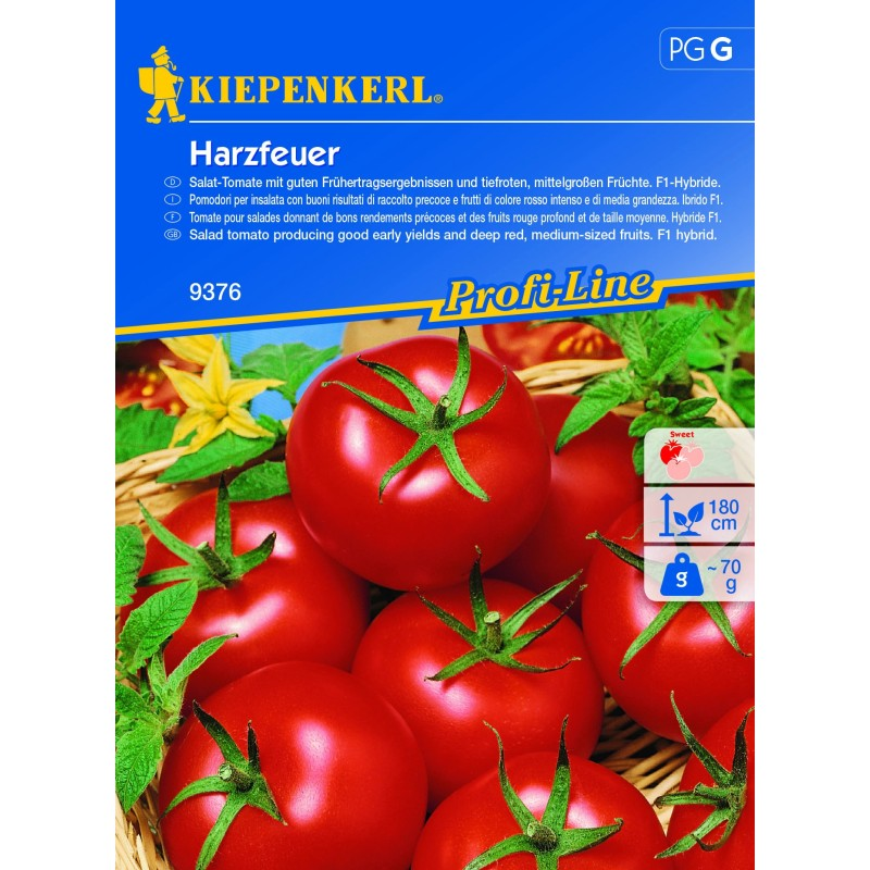 Tomate F1 ronde Harzfeuer