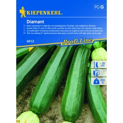 Courgette Diamant