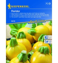 Courgette jaune ronde Floridor