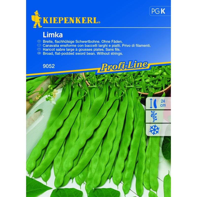 Haricot à rames Limka
