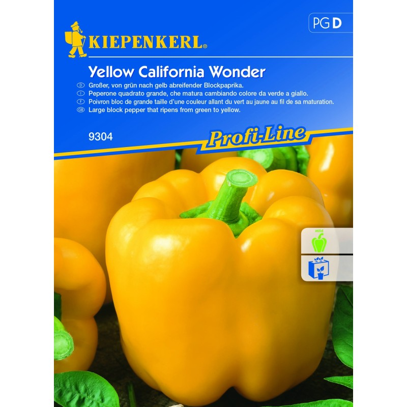 Poivron Jaune Yellow California Wonder
