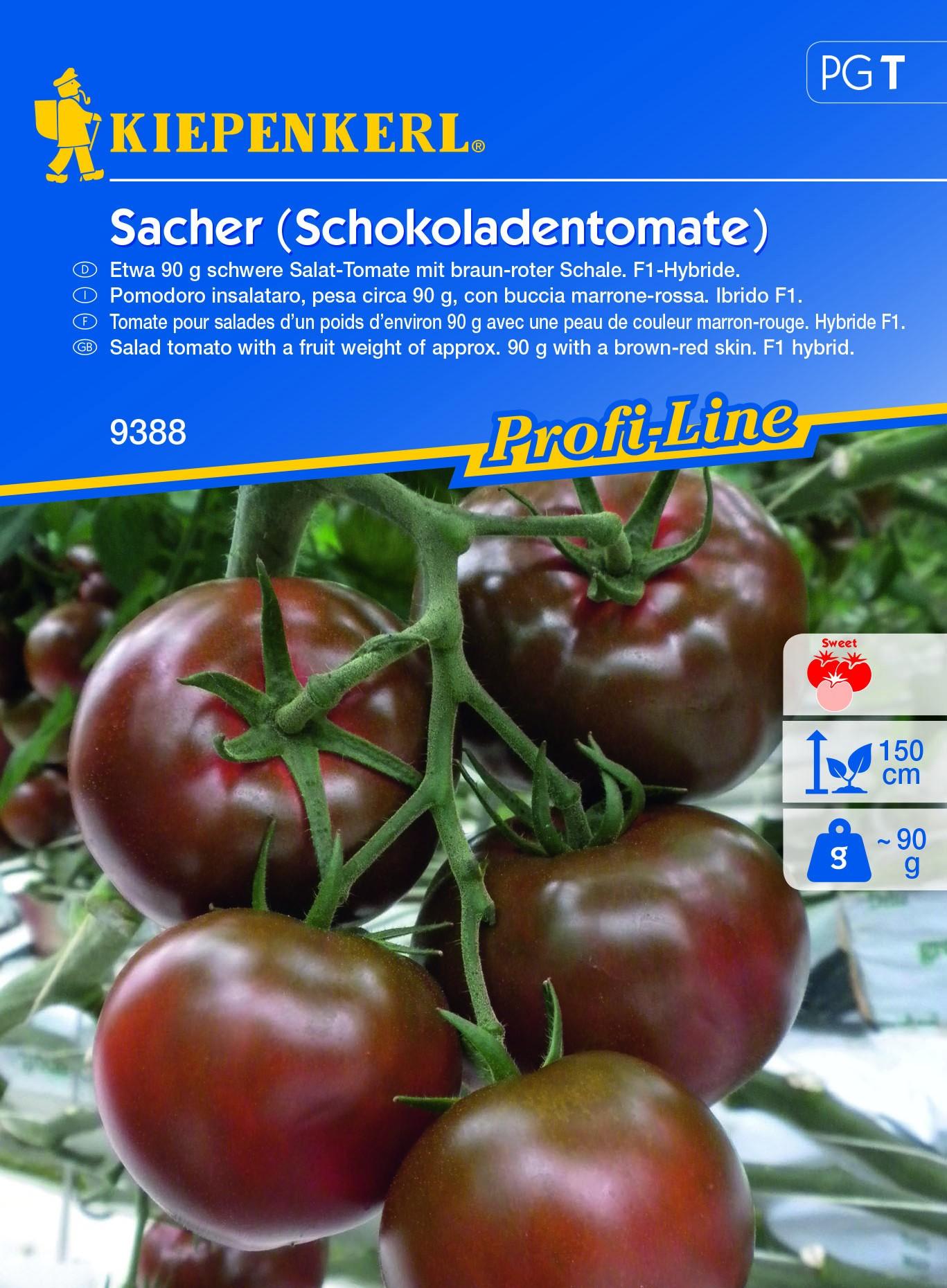 Faire Germer Un Marron D Inde tomate chocolat - graines le colporteur