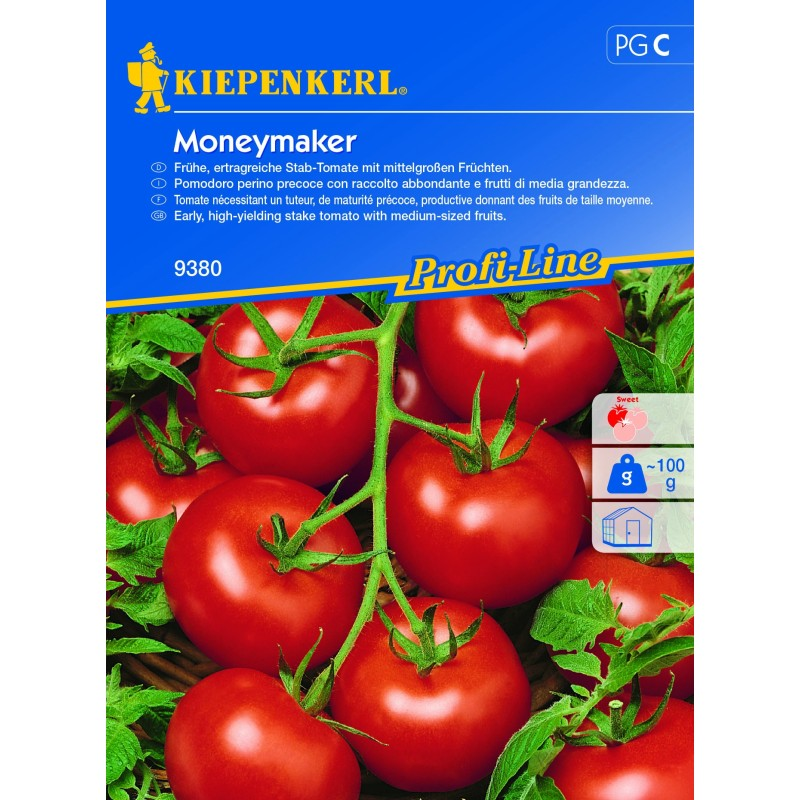 Tomate ronde Moneymaker