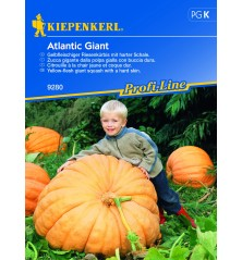 Potiron Atlantic Giant