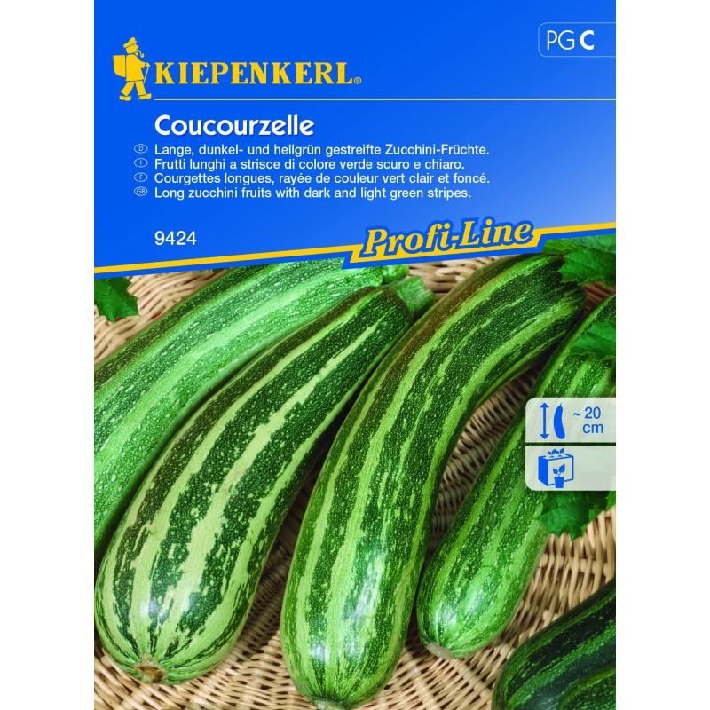 Courgette Coucourzelle