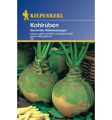 Chou navet, Rutabaga Jaune à Collet Vert  (Wilhelmsburger)